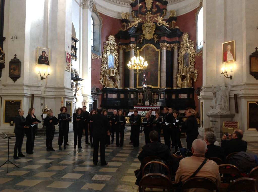Coroa Cracovia 8